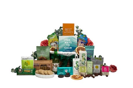 Get Well Therapy Basket Gifts