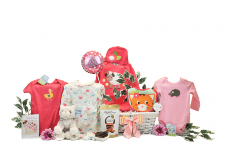 My First Year Baby Girl Gift Basket