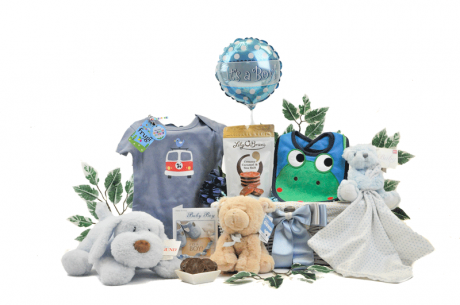Baby Boy Playtime Gift Basket