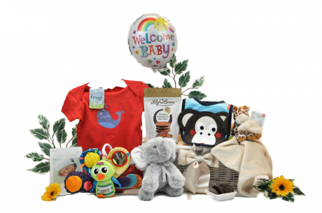 Baby Playtime Gift Basket
