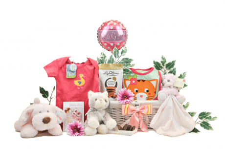 Baby Girl Playtime Gift Basket