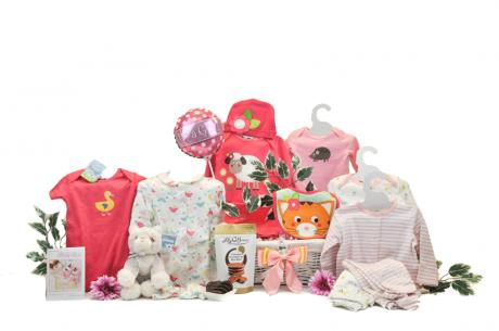 Stylish Baby Girl Gift Basket